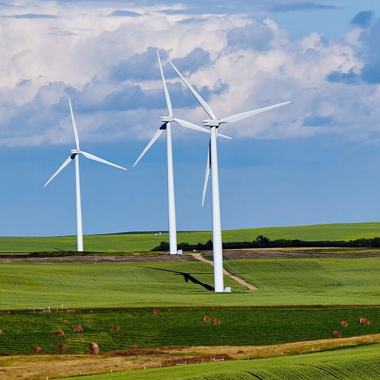 National Energy Developer wind